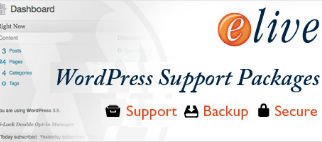 Wordpress Support Packages